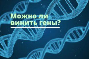 Можно ли винить гены?