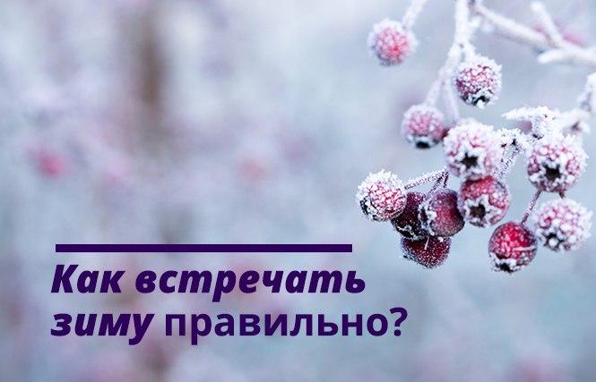 как подготовить организм к зиме