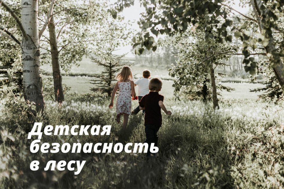 детская безопасность в лесу