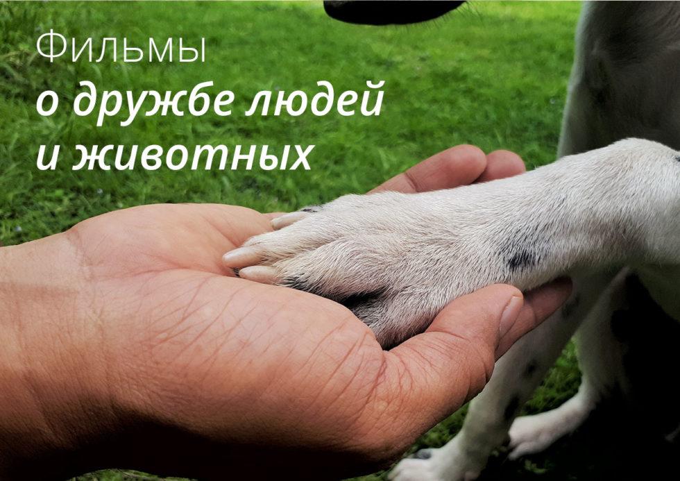 фильм о дружбе людей и животных