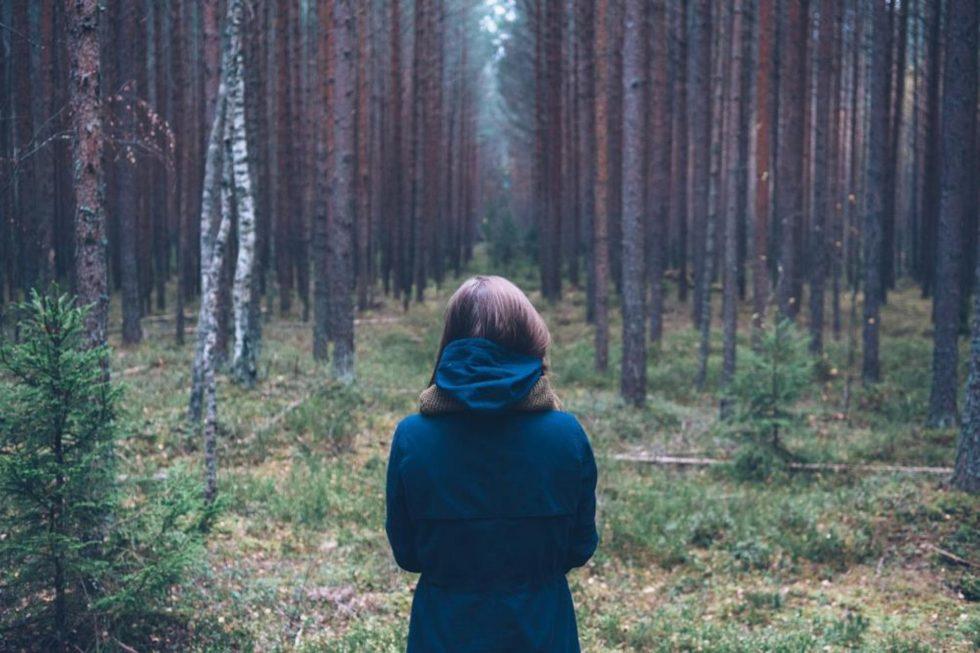 что делать, если потерялся в лесу